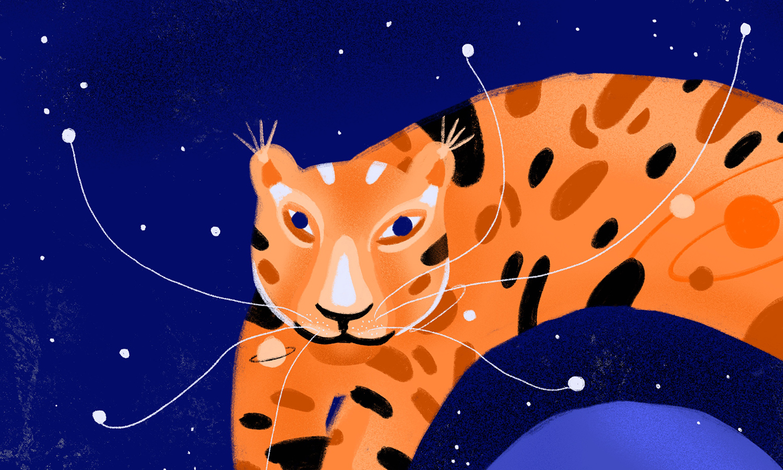 Cosmic Tiger | Ana Gaman Illustration