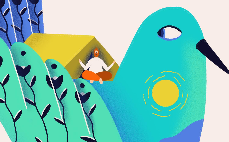 Ana Gaman Tiny House illustration Bird Camp
